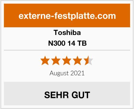 Toshiba N300 14 TB Test