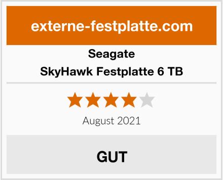 Seagate SkyHawk Festplatte 6 TB Test