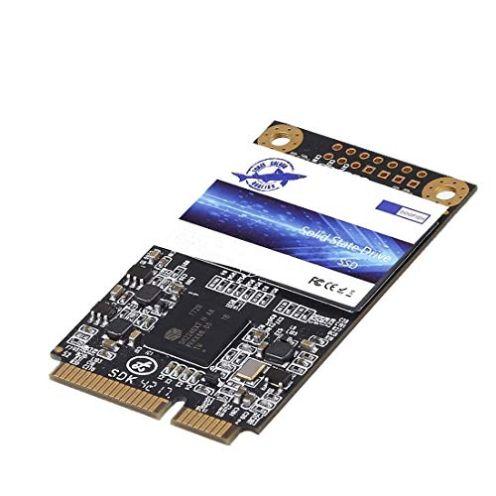 Dogfish SSD Msata 500 GB